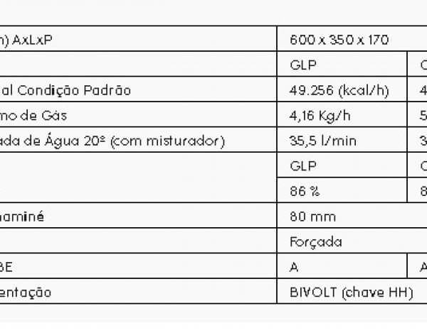 Rinnai REU 2802 FEC